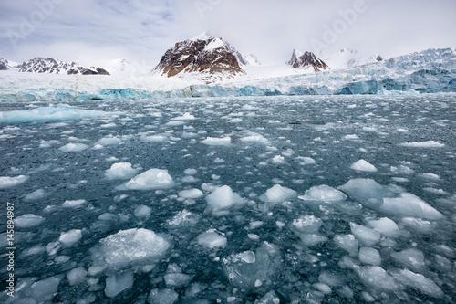 Aluminium Ijsbeer Fantastische Arktis