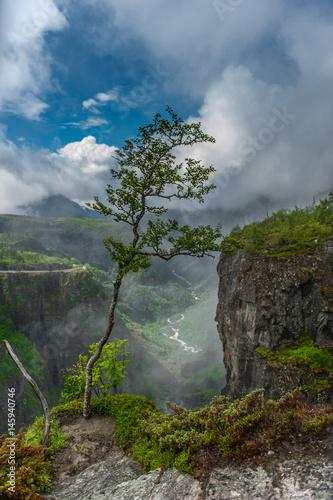 Eidfjord, Norwegen, Voringsfossen - 145940746