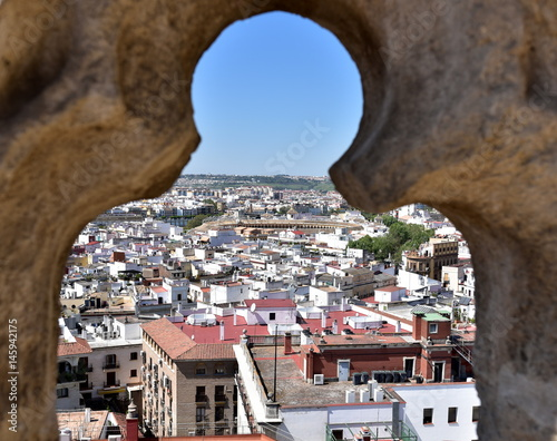 Aerial view of Seville from the roof of the Sevlle Cathedral