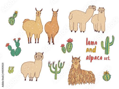 Cute Lama, Alpaca and cactuses set. Hand drawn colorful vector illustration.