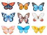 Watercolor butterflies set - 146038708