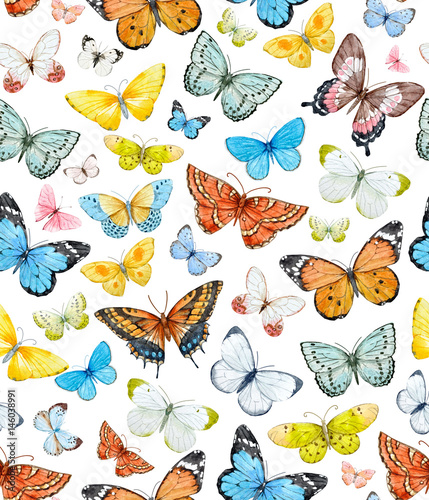 Fototapeta Watercolor butterfly pattern