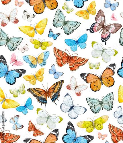 Akwarela motyl wzór