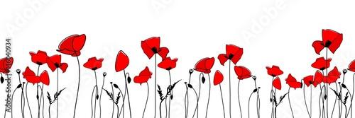 Borte nahtlos mit roten Mohnblumen