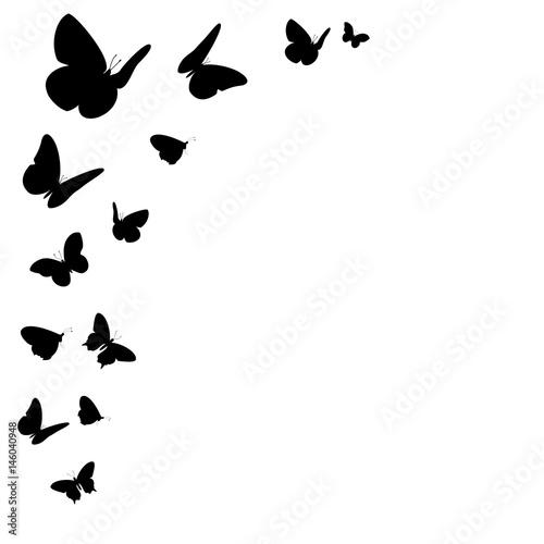Bordüre mit schwarzen Schmetterling Silhouetten - 146040948