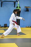Girl doing Karate testing for Black Belt