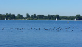 Big lake in Rotterdam