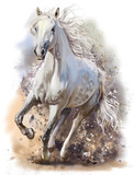 White horse runs watercolor painting - 146260117