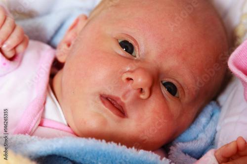 Little newborn baby lying in blanket Poster