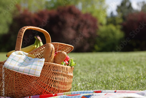 Póster Picnic basket with healthy food and blanket on green grass in park, nature