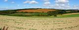 Herbstlandschaft im Hunsrück mit Wald und farbigen Feldern Panorama