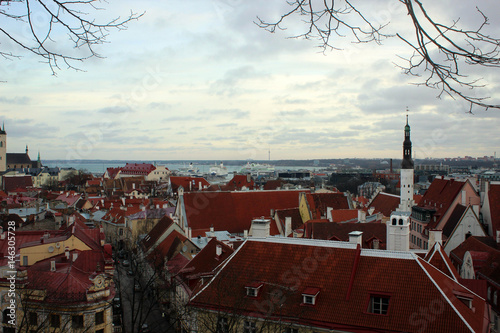 Old town of Tallinn panorama, Estonia Poster