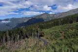 Route de montagne à Tenerife