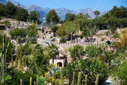 Dino Park in Spain