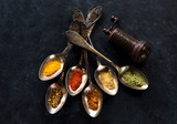 Spices and herbs spoons on a black background - 146411524