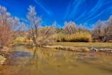 Muddy River in Desert