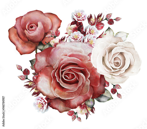 watercolor flowers. floral illustration - red rose. branch of flowers isolated on white background. Leaf and buds. Cute composition for wedding or  greeting card - 146784987