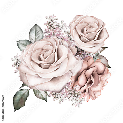 watercolor flowers. floral illustration - pink rose. branch of flowers isolated on white background. Leaf and buds. Cute composition for wedding or  greeting card - 146790320