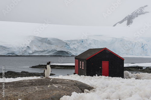 Fotobehang Antarctica Port Lockroy Antarctic station