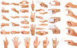 collection of hands