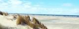 Düne im Wind mit Blick auf die Nordsee