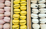 Collection of Bright Coloured Macaroons at Food Festival