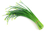 fresh chive flower in a bunch isolated on white background - 147296589
