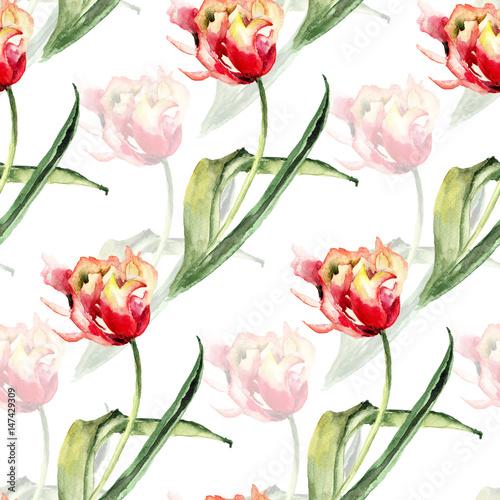 Fototapeta Seamless pattern with Tulips flowers