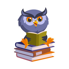 Nice Owl He Is Reading A Book  Illustration Sticker