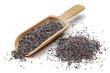 Poppy seeds in wooden scoop