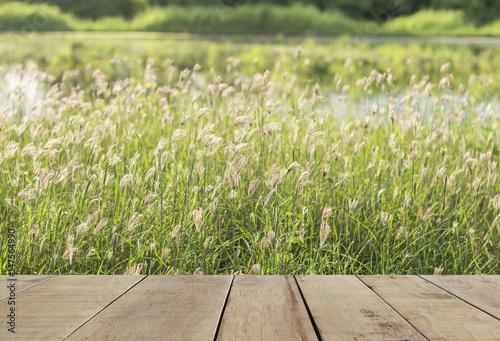 Fototapeta wooden plank with little wildflowers on the field