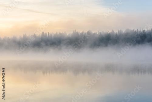 lake sunrise fog reflection forest - 147603963