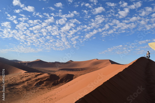 Dünen Namibia Poster
