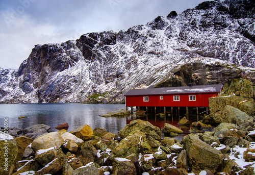 Poster Typical red rorbu fishing huts on Lofoten islands in Norway on the shore of the fjord