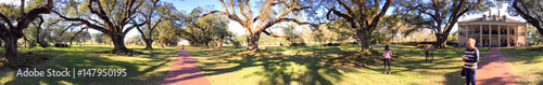 Fotobehang Zwavel geel LOUISIANA, USA - FEBRUARY 2016: Panoramic view of Oak Alley Plantation. This is a famous Louisiana plantation