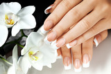 Fototapety Female hands with white nails on background of white flowers.