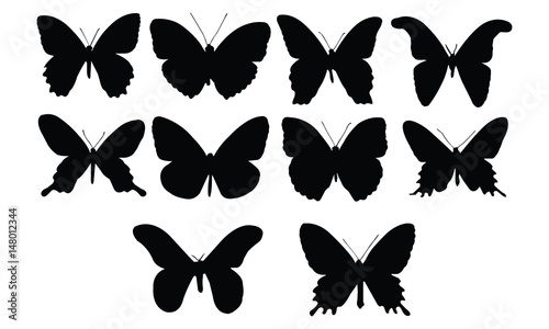 Butterfly Silhouette vector illustration