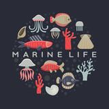 Marine Life Card.