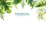 Hand drawn watercolor tropical plants background. Exotic palm leaves, jungle tree, brazil tropic borany elements. Perfect for fabric design. Aloha art. - 148077322