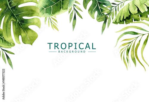 Ręcznie rysowane tła akwarela roślin tropikalnych. Egzotyczne liście palmowe, drzewo dżungli, elementy brazylijskiego tropiku borany. Idealny do projektowania tkanin. Sztuka Aloha.