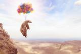 Ein Bär hängt an Luftballons - 148101935