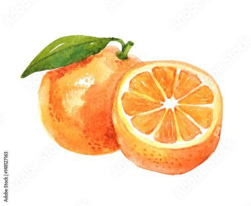 Orange fruit with leaf, watercolor illustration