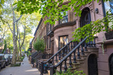 Scenic street view of a leafy block of stoops in a brownstone Brooklyn neighborhood in New York City