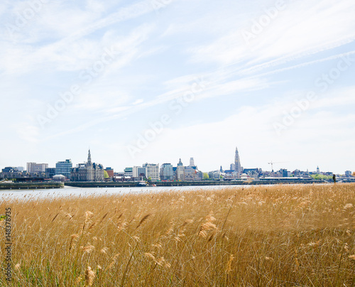 Foto op Plexiglas Antwerpen View on Antwerp by the River Scheldt in Flanders, Belgium