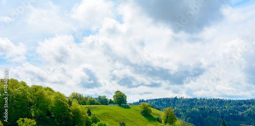 Panorama Landschaft im Sommer mit viel Grün und wolkigem Himmel
