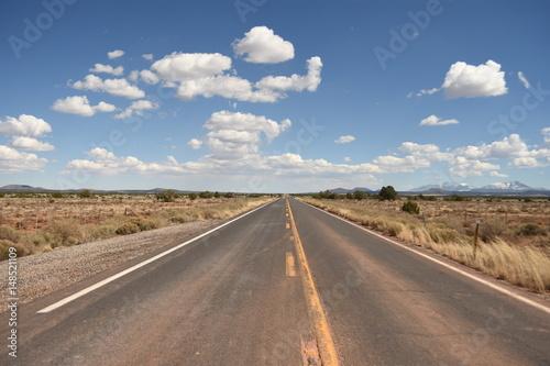 Endless road through Mojave desert in California Poster