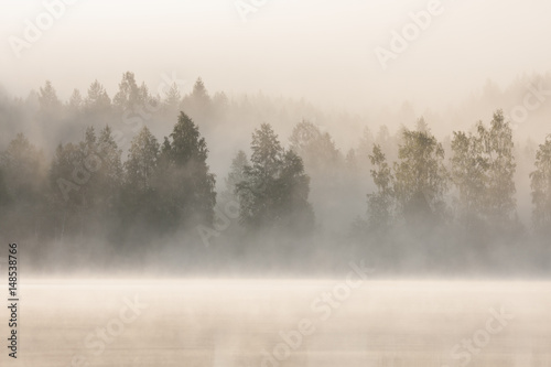 Foggy forest and lake at dawn  - 148538766