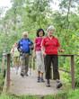 Wanderer überqueren eine kleine Brücke