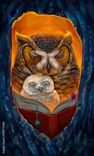Foto op Plexiglas Uilen cartoon Сова с совенком