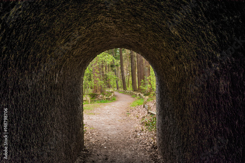 Papiers peints Nature Tunnel in landgoed Heidestein Driebergen-Rijsenburg Utrecht Nederland